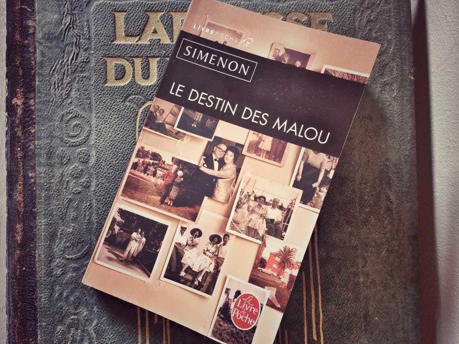 Le Destin des Malou de Simenon par Livrepoche.fr